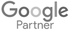 Dallas Google partner