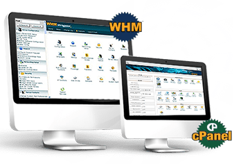 affordable cPanel hosting
